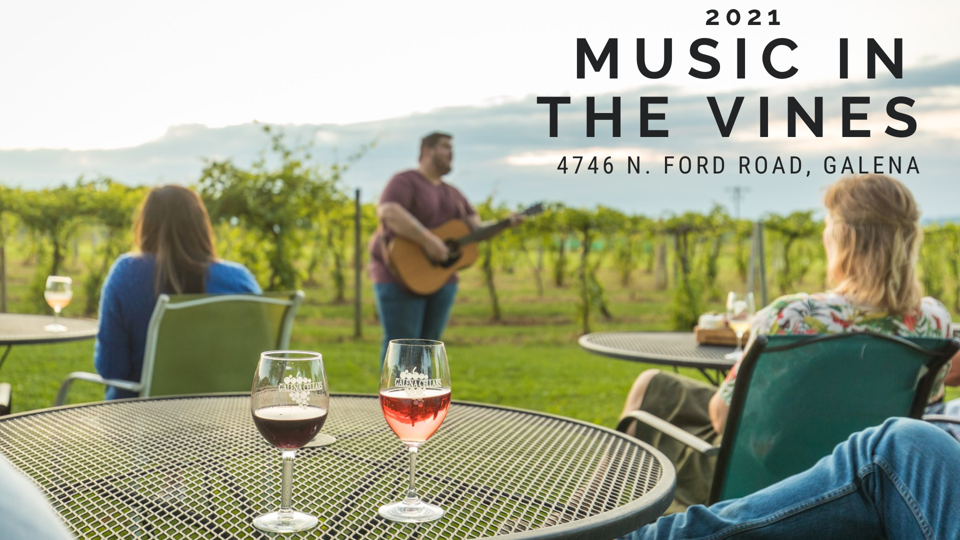 Music in the Vines with Steve McIntyre
