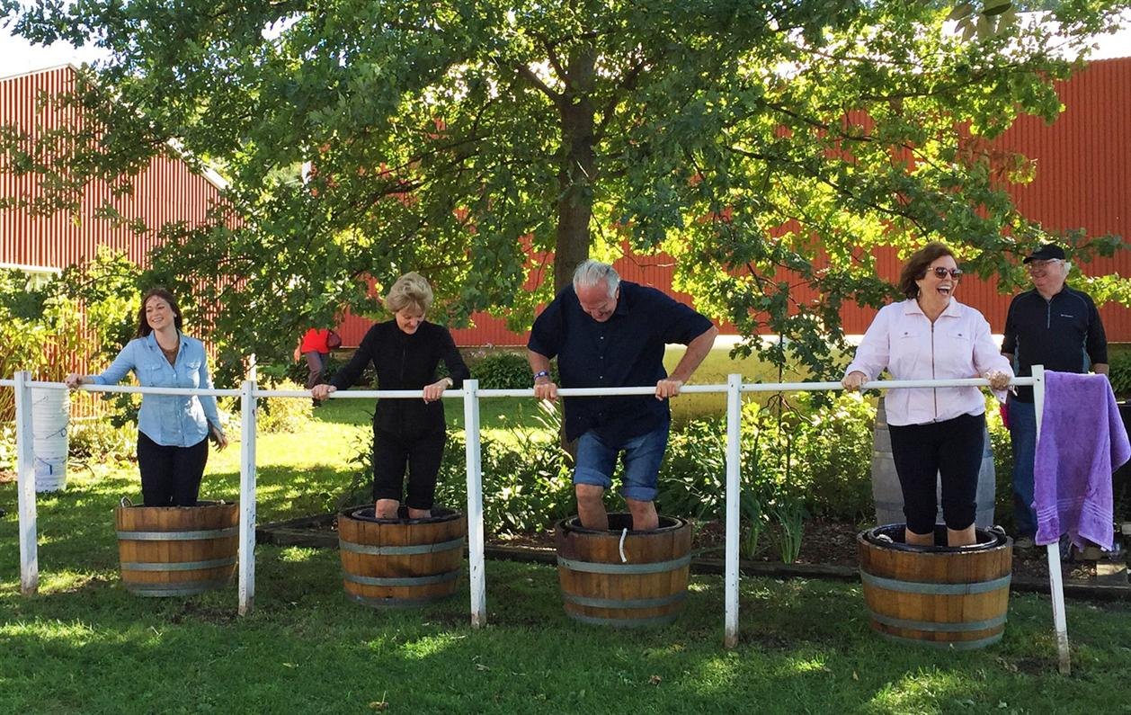 Galena Cellars Fall Harvest & Art Festival - 11th Annual